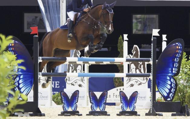 Un très agressif virus de l'herpès met les chevaux suisses en quarantaine