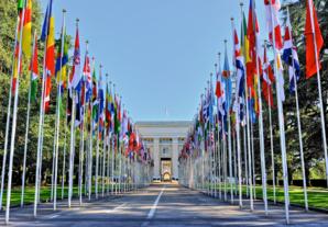 Vous faites un stage à l'ONU? Voici nos 10 conseils pour survivre!