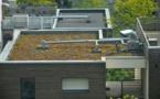 Des jardins et des toits